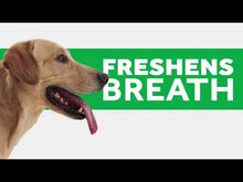 Load and play video in Gallery viewer, Benefits and How to use TropiClean Fresh Breath Clean Teeth Gel for Dogs.