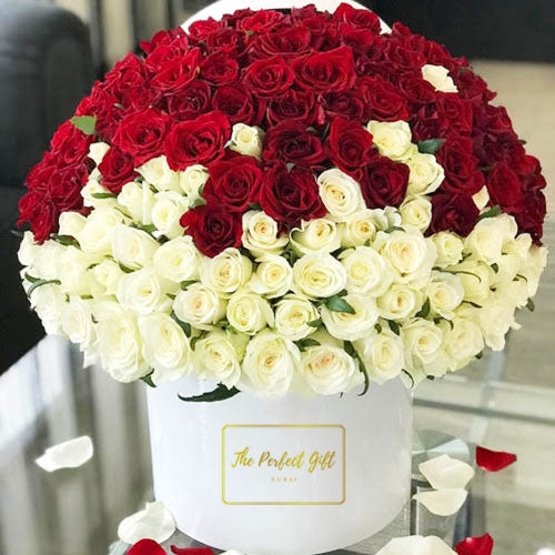 300 Luxury Roses Gift Box Dubai