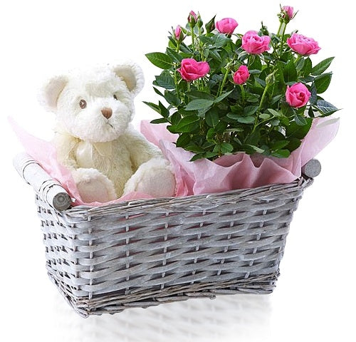 Teddy & Flowers Basket Dubai