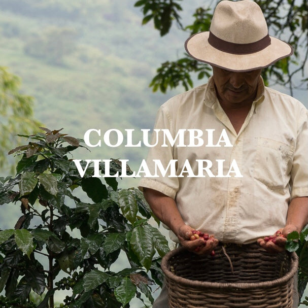 Colombia - Villamaria - Red Associations