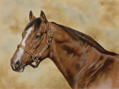 "Signed, Limited Edition ""Head Study of Northern Dancer"" by Canadian equine artist, Debbie Goldring"