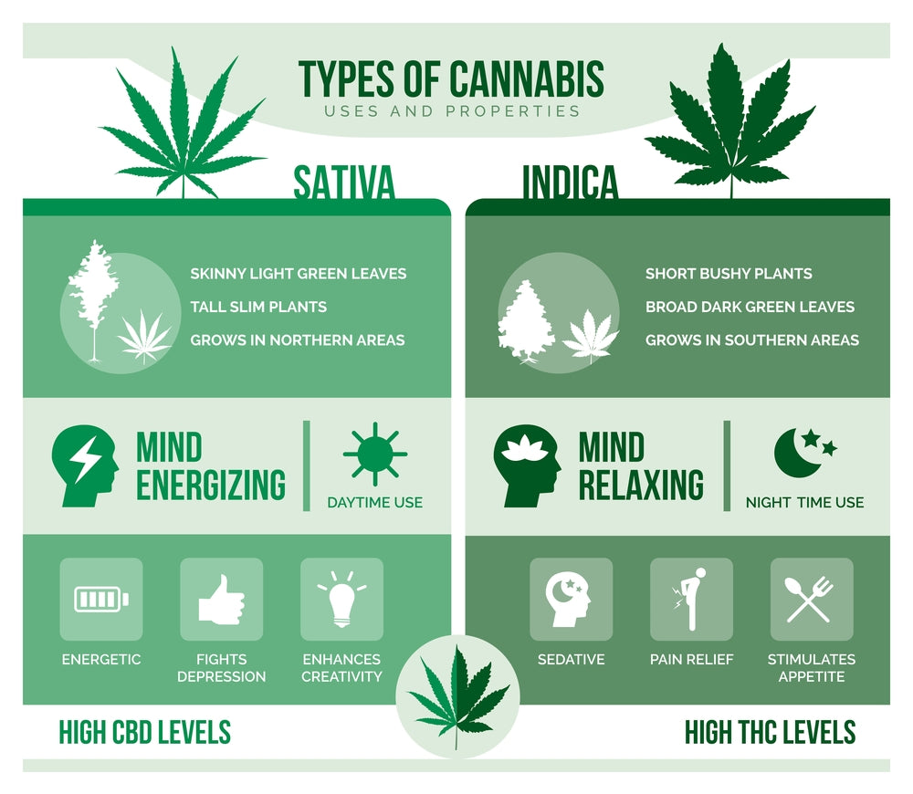 Is indica or sativa better for anxiety