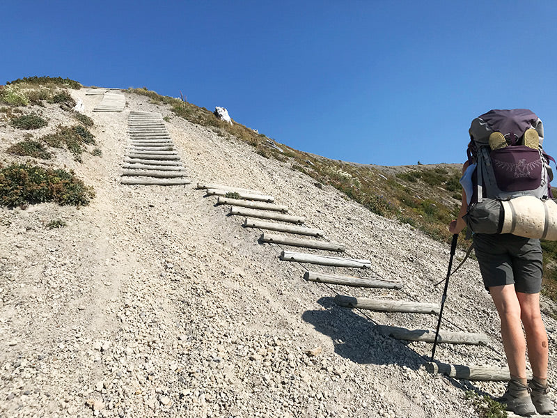 daunting log stair climb Mt St Helens backpack- nature jewelry inspiration