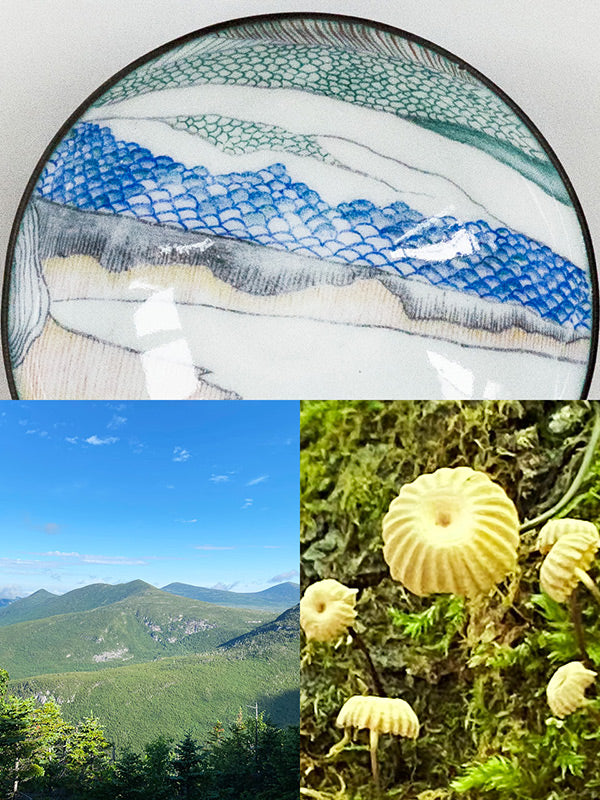 handmade copper and glass enamel bowl with Appalachian Trail mountainscape and tiny mushrooms that were the inspiration for the design