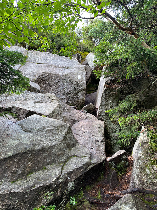 challenging rock path on the appalachian trail marked with white blaze