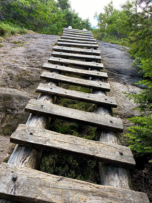 wood ladder assist up steep rock on appalachian trail photo by catherine grisez