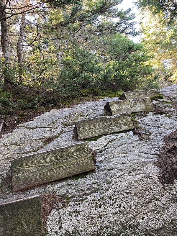 steep rock trail with wood steps attached on appalachian trail