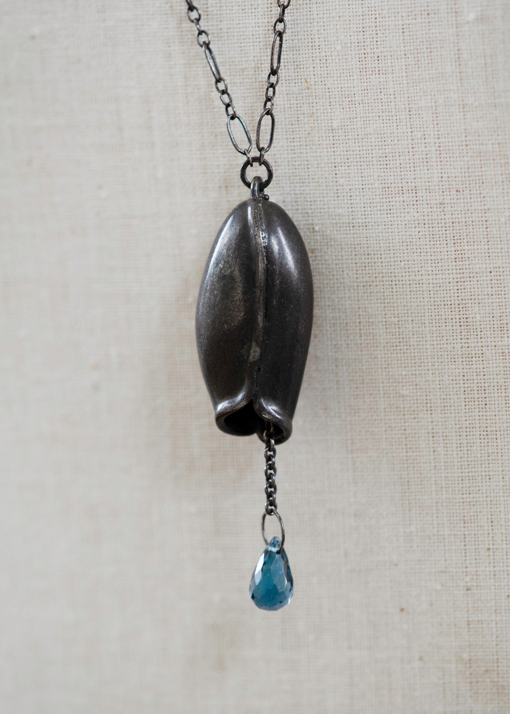 Long pod and Blue topaz necklace