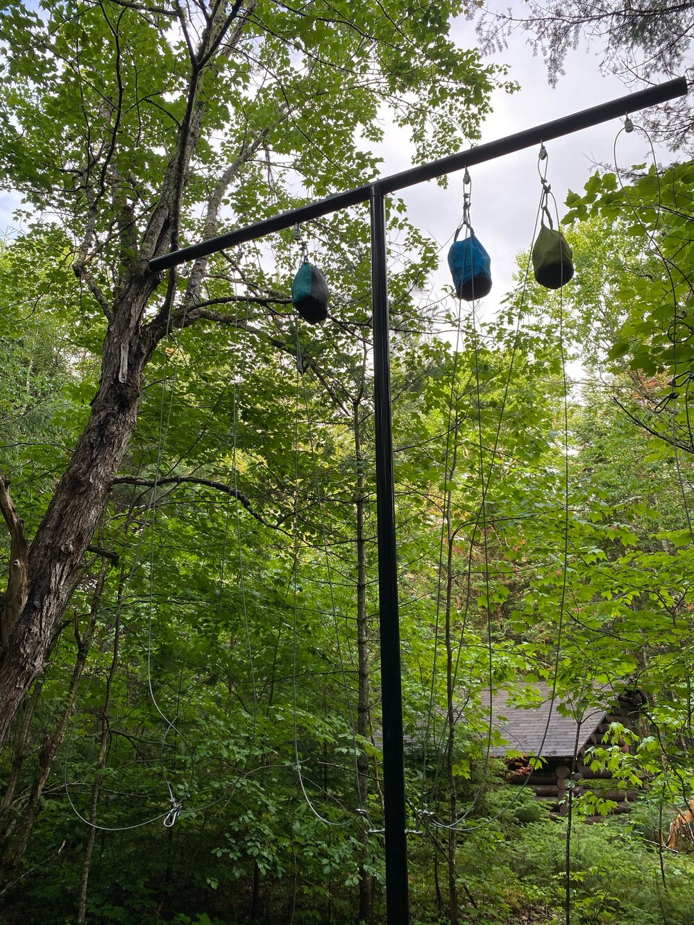 Bear wires - best to keep food out of reach, more for tiny squirrel bears than anything else.
