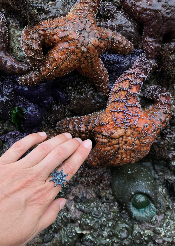 black silver Sea star ring points to bumpy texture orange starfish on ocean sea stack rock wall