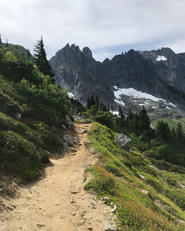 A view of a trail in the North Cascades from last summer with the Wonderkrew - so beautiful!