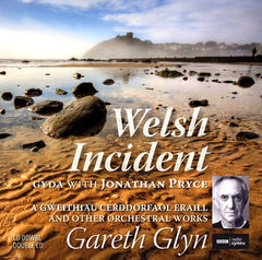Gareth Glyn, Welsh Incident