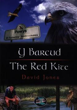 The Red Kite|Y Barcud