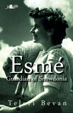 Esmé - Guardian of Snowdonia