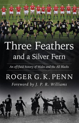 Three Feathers and a Silver Fern