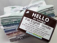 Load image into Gallery viewer, Robert Kaufman Hello My Name Is Arctic Fat Eighths Bundle