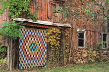 Load image into Gallery viewer, Kaffe Fassett's Quilts in America