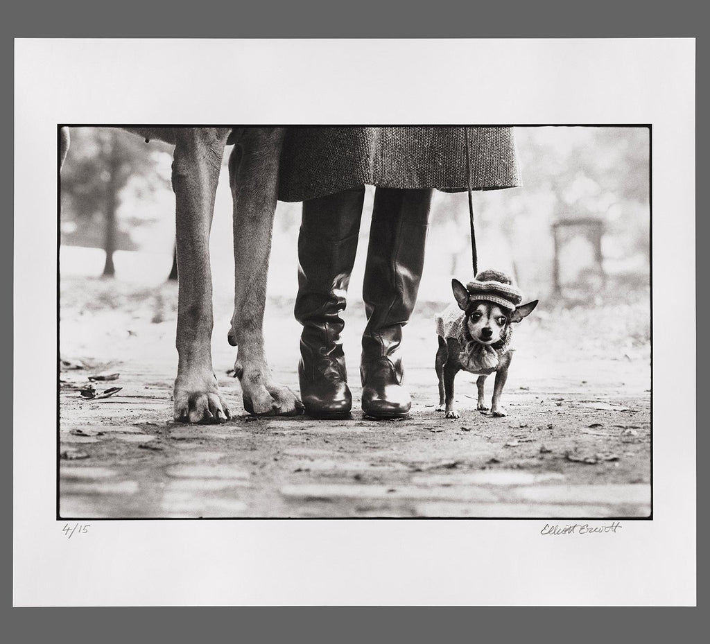 18. New York City. 1974. (Dog legs)
