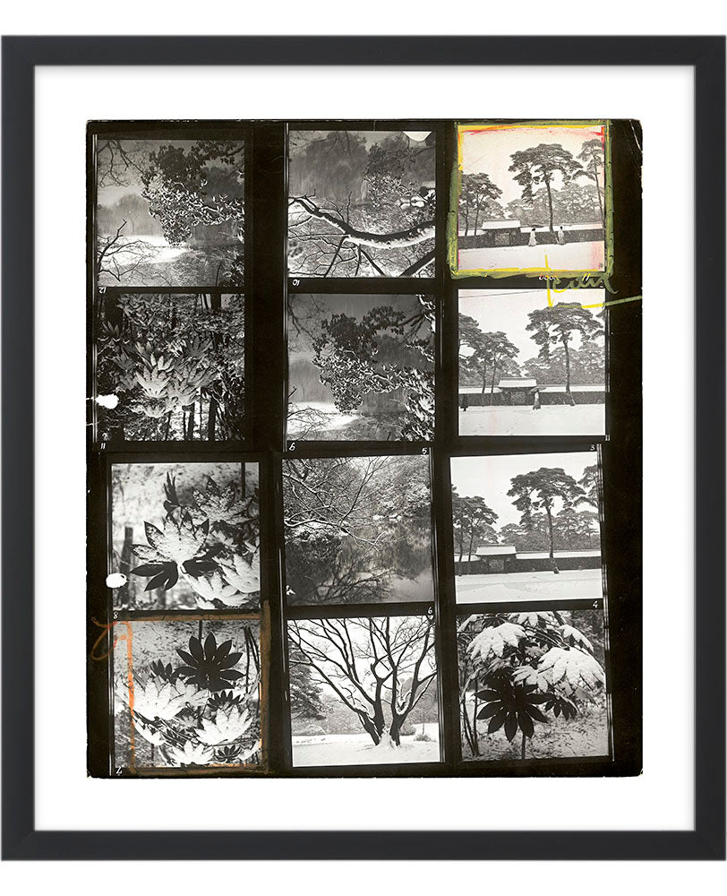 Contact Sheet Print: Gardens of the Meiji temple. Tokyo, Japan. 1951.