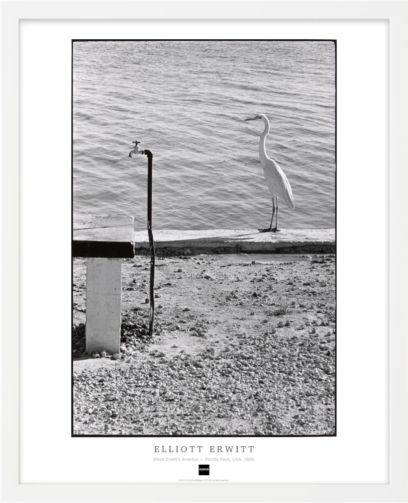 Magnum Collection Poster: Elliott Erwitt's America — Florida Keys, USA. 1968.