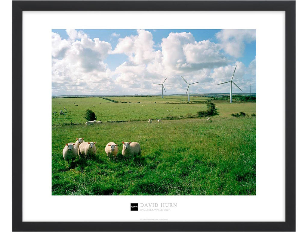 Magnum Collection Poster: Anglesey, Wales. 2007.