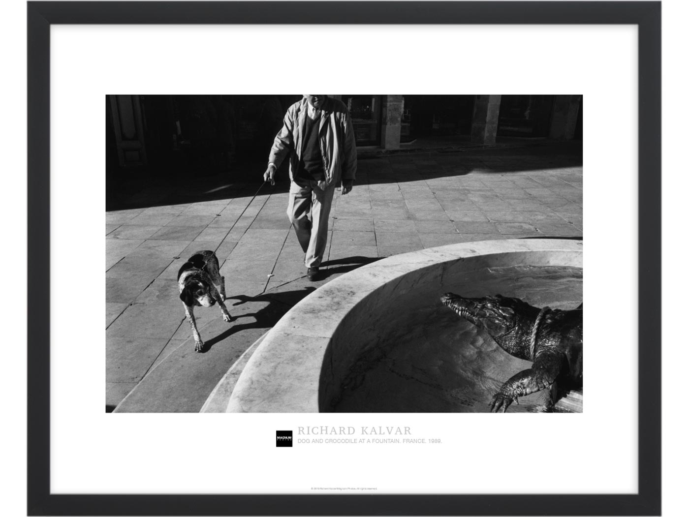 Magnum Collection Poster: Dog and crocodile at a fountain. France. 1989.