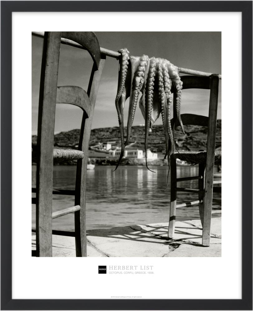 Magnum Collection Poster: Octopus. Corfu, Greece. 1938.