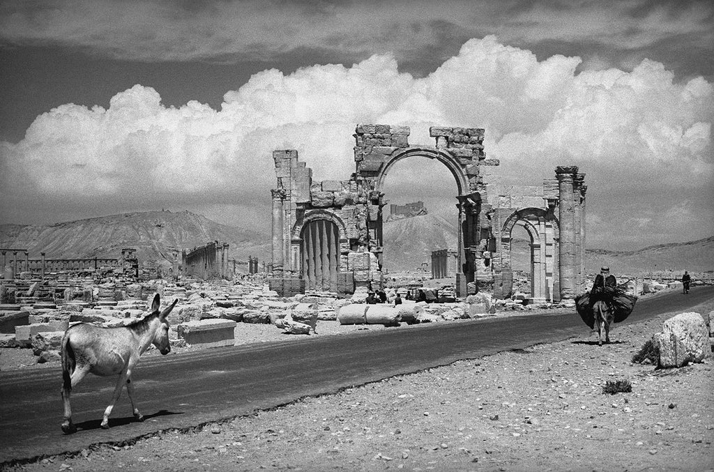 The ruins of Palmyra. Palmyra, Syria. 1966.