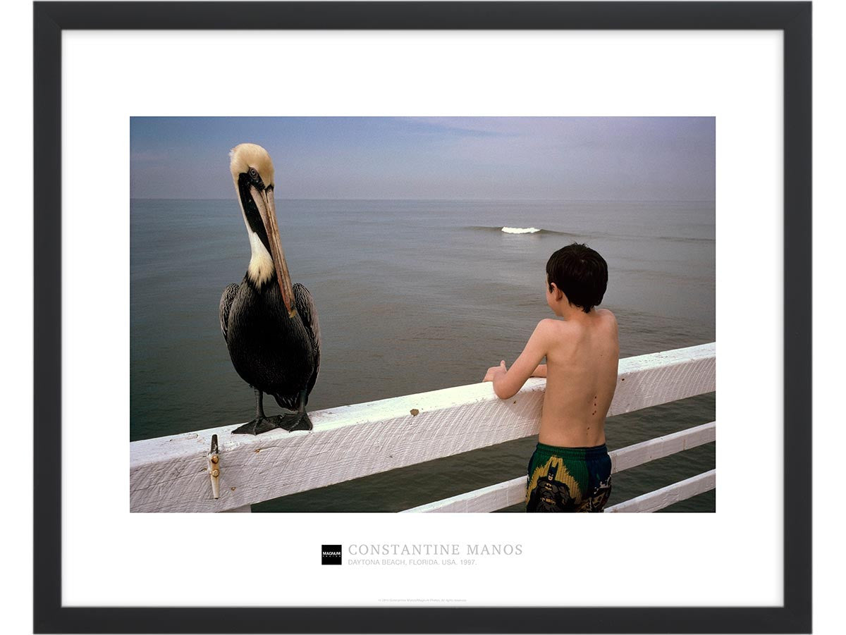 Magnum Collection Poster: Pelican and boy. Daytona Beach, Florida. USA. 1997.