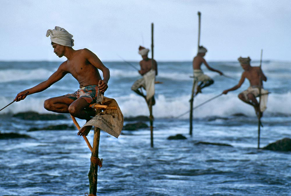 Signed Steve McCurry Collectors Print: Stilt Fishermen. Sri Lanka. South Coast. Weligama. 1995.