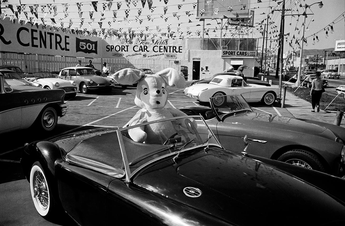 Used car lot on Wilshire Boulevard. Los Angeles, California, USA. 1960.