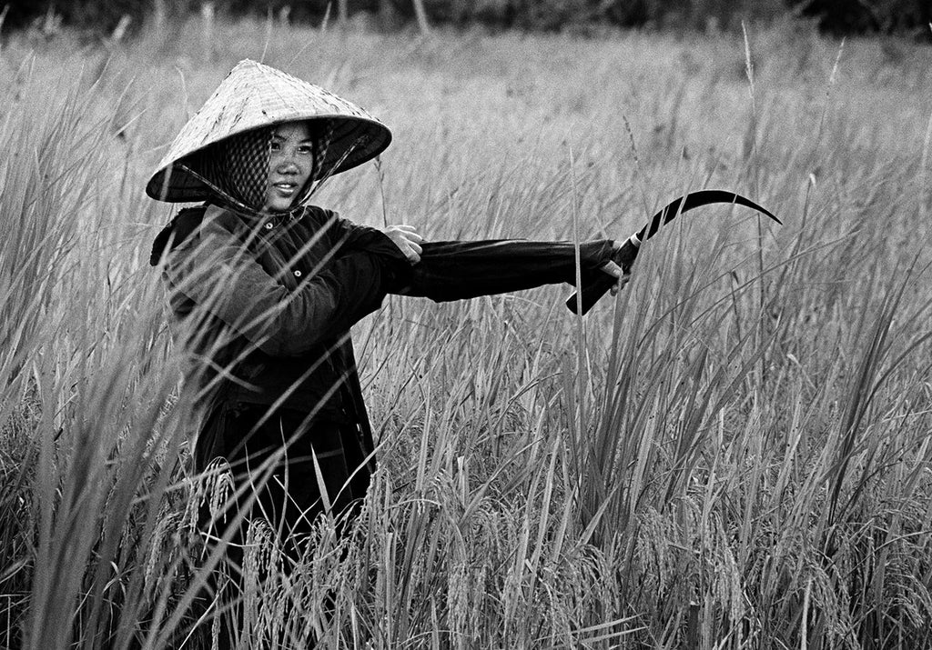 Rural life. South Vietnam. 1970.