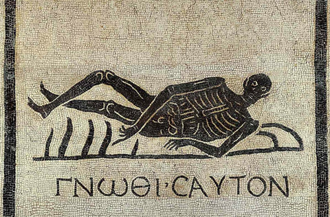Black and white ancient roman moscaic of skeleton in repose with latin words saying Know Thyself. A memento Mori