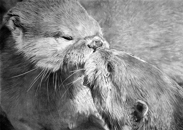 OTTERS KISSING