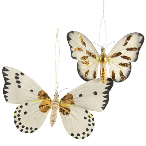 Moth with Gold Markings Ornament