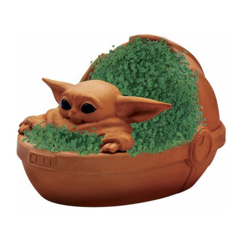 Chia Pet The Child