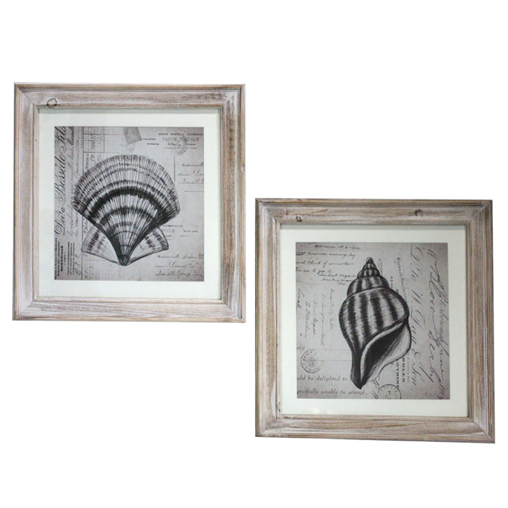 Urban Designs Coastal Collection 2-Piece Sea Shells Square Framed Wall Art