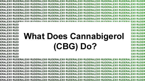 What Does Cannabigerol Do?