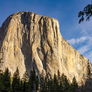 Load image into Gallery viewer, El Capitan - Due Torri Coffee