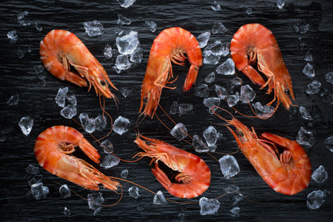 Cooked Australian Tiger Prawns PEELED