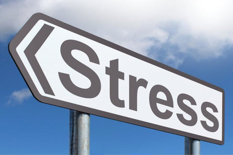 police stress support