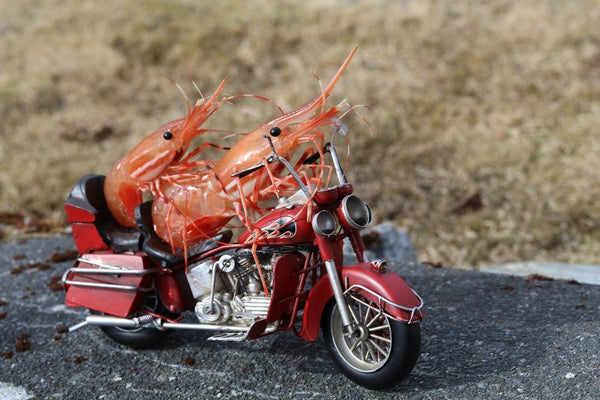 Easy Riders Motorcycle Shrimp Card