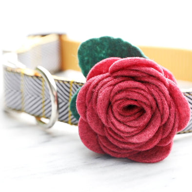 Dog Collar Ruby Pink Rose Flower
