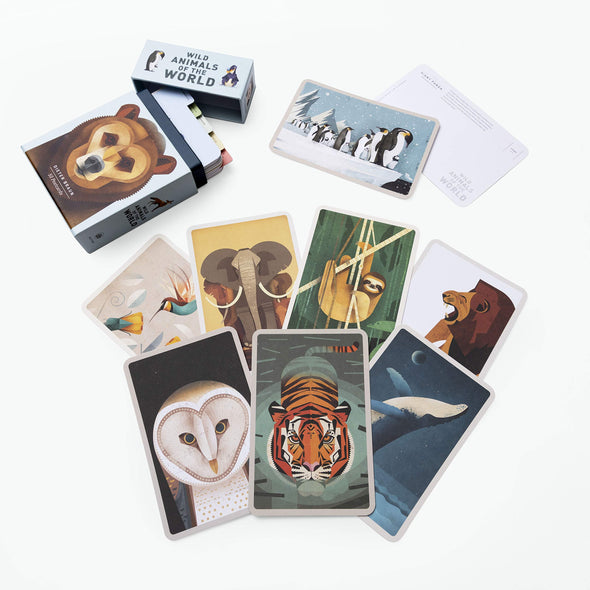 Wild Animals of the World: 50 Postcards