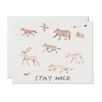 Stay Wild Everyday Card
