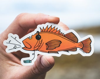 Rockfish Sticker