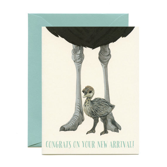 Ostrich New Arrival Card