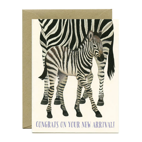 Zebra New Arrival Card