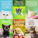 Social Justice Kittens Postcard 6 Pack