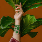Pilea Plant Temporary Tattoo